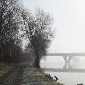 Vltavská mlhovka III