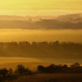 Mlhavé sluneční prosincové ráno pod Pálavou