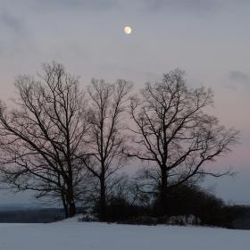 Zimní večer II.