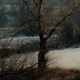 Cestička pri rieke.