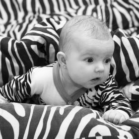 Dcera zebra :-)