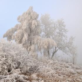 Krásná zima