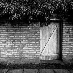 Dveře, keř a zídka...