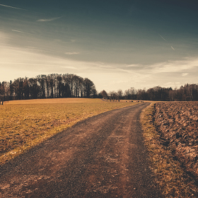 Cestička k domovu...