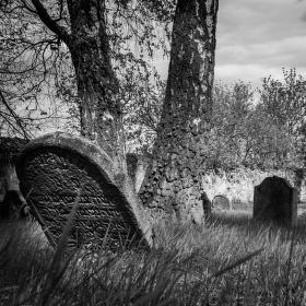 Starý židovský hřbitov Divišov