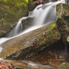 z Bučacího potoka