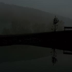 mlžnou ranní oborou