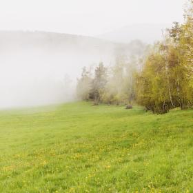 Když prší a lesy pracují