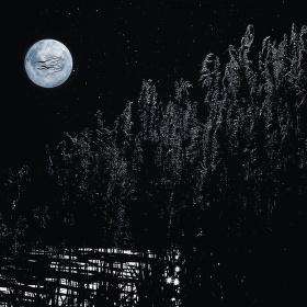 Noční klid u jezera