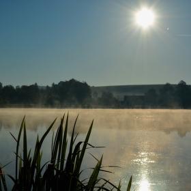 ranní pohled