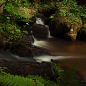 Koutecký potok