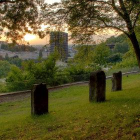 Výhled z parku