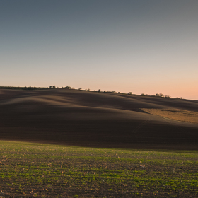 Večer v polích