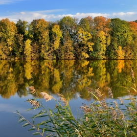 Podzim na Polaneckých rybnících...