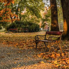 Podzimní posezení