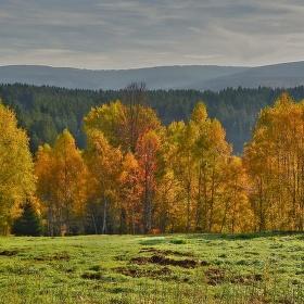 Poslední záchvěvy podzimu
