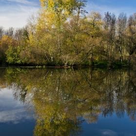 Podzim u řeky.