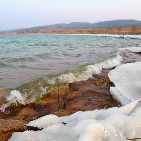 Jezerní ledová
