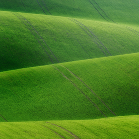 Na zelenej vlne