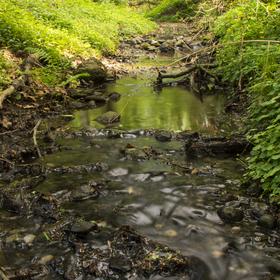Jediná řeka