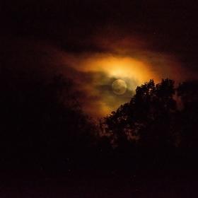 Čaro noci