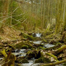 ...jarní horský potok...