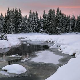 Šumava - Roklanský potok