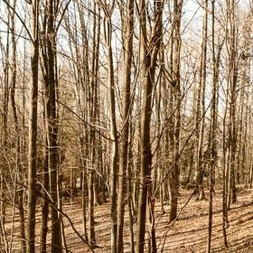 les Milíře