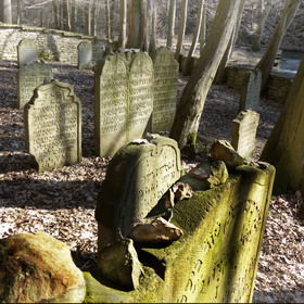 Lesní hřbitov u Podbřezí II