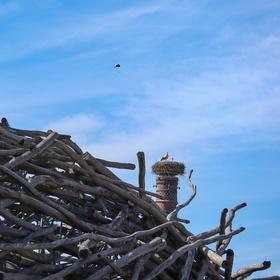 Čapí hnízdo