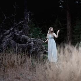 Návrat do temného lesa