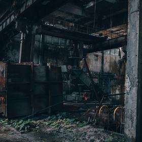 Moss Factory
