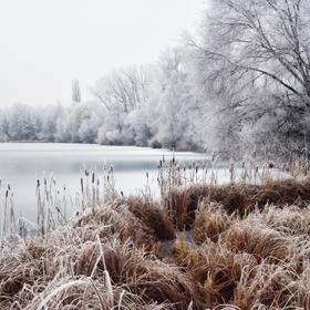 Zima u jezera