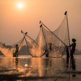 Lovci slnečných lúčov
