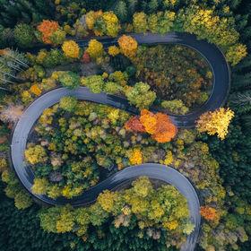 Podzimní esíčko I