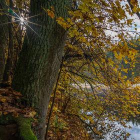 Podzim na Otavě