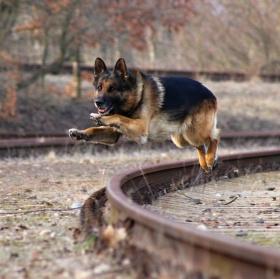 Baxování na kolejích