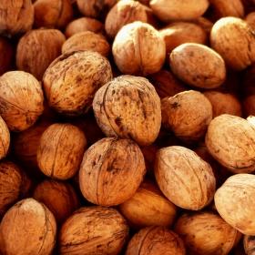 Ořechová sezóna