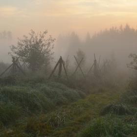 Mlhavé probuzení
