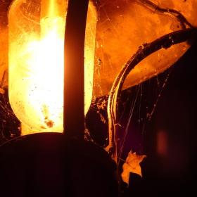 záře podzimní lampy