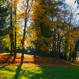 Kouzlo a barvy podzimu!