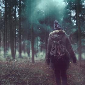 Začarovaným lesem