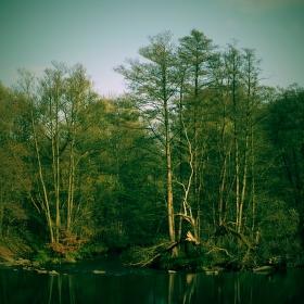 U zrodu řeky