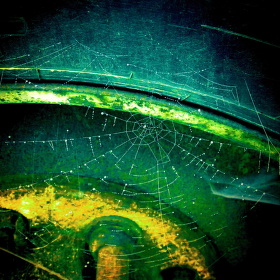 Každá pavučina má své místo.....