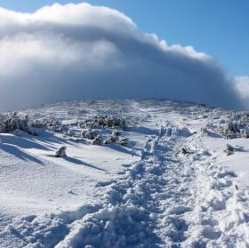 cesta ze Sněžky