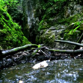 Podomský potok