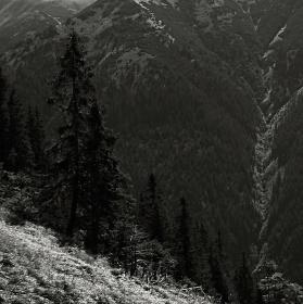 Koprová dolina