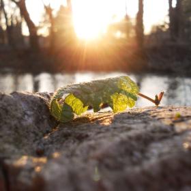 Západ slnka pri rieke