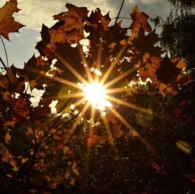 podzimní slunce