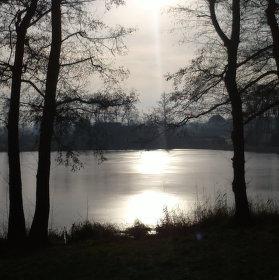 Zbraslavický rybník